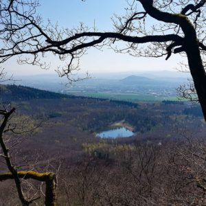 Krufter Waldsee